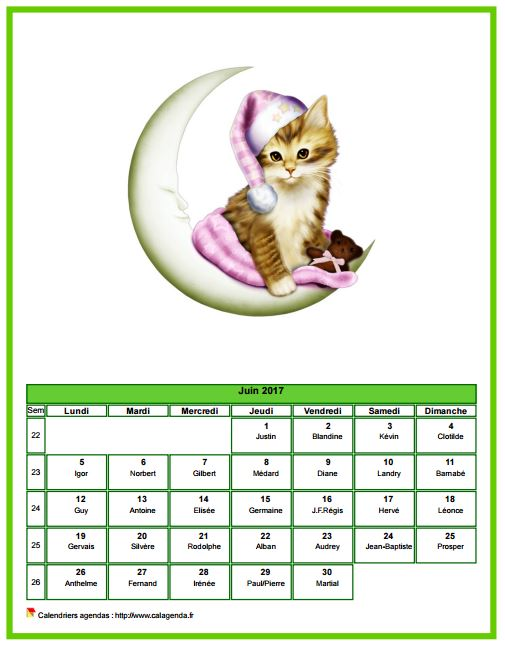 Calendrier juin 2017 chats