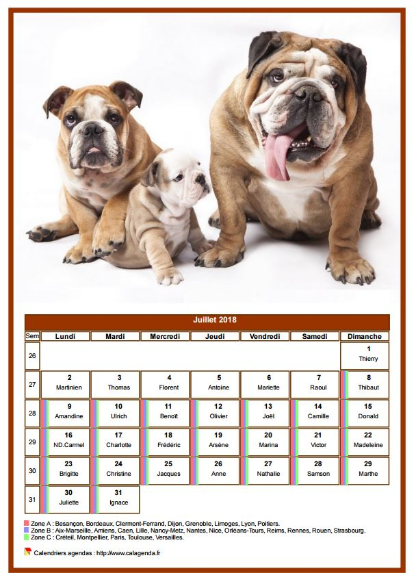 Calendrier juillet 2018 chiens