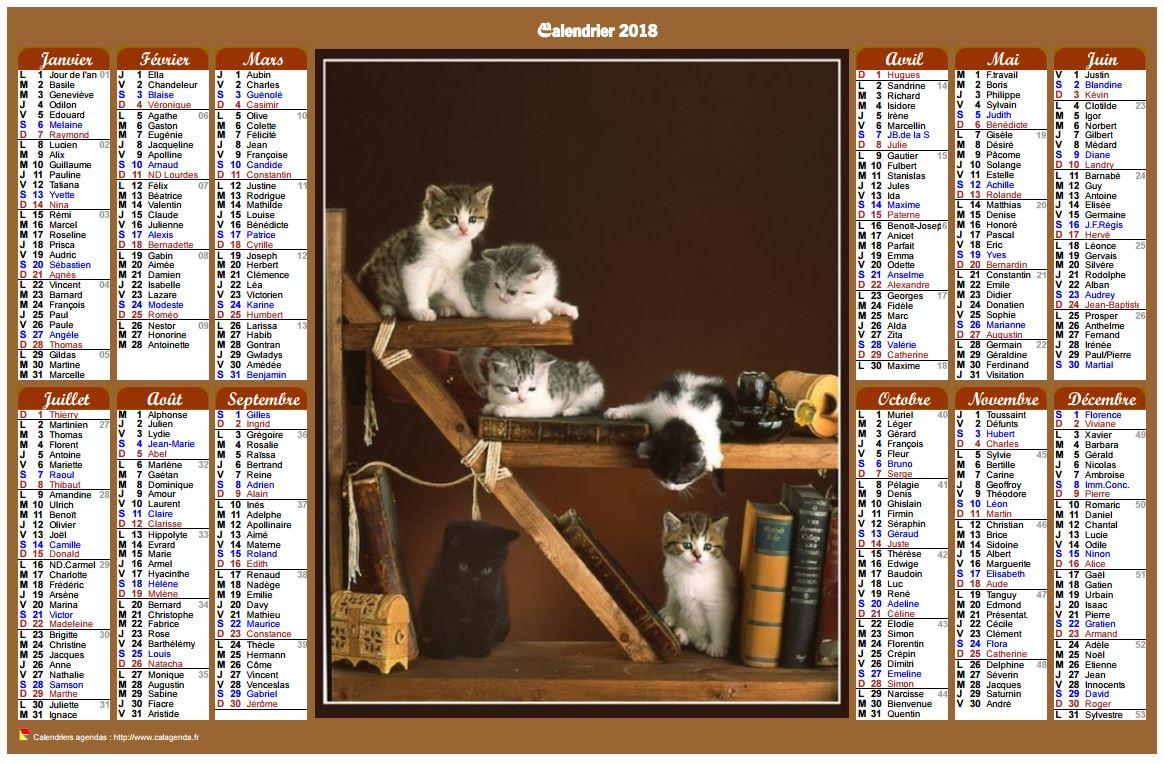 Calendrier 2018 annuel de style calendrierdes postes avec des chats