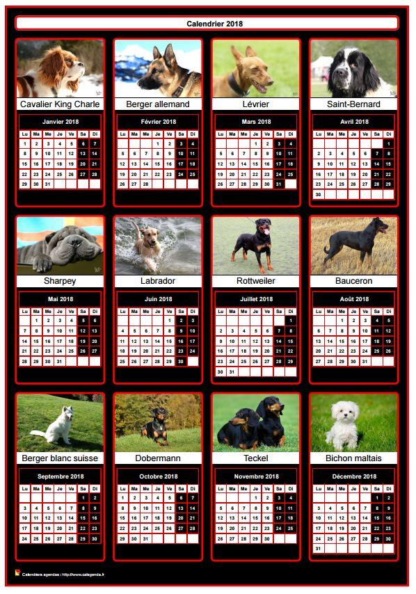 Calendrier 2018 annuel, 12 chiens de race