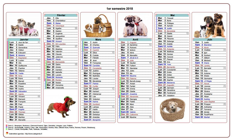 Calendrier 2018 semestriel chiens