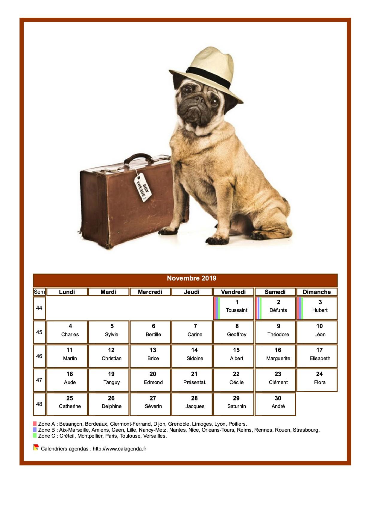 Calendrier novembre 2019 chiens