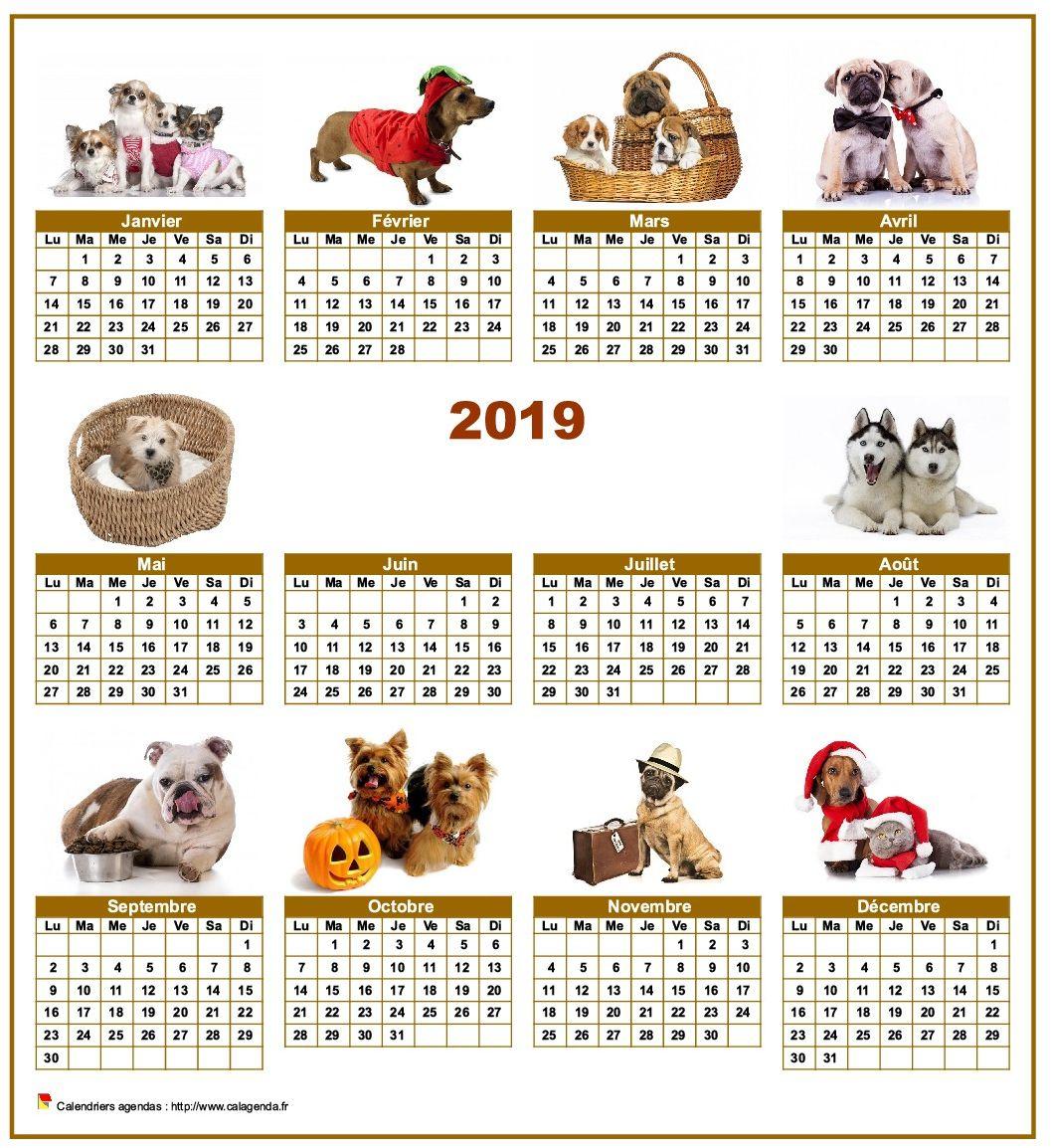 Calendrier 2019 annuel spécial 'chiens' avec 10 photos