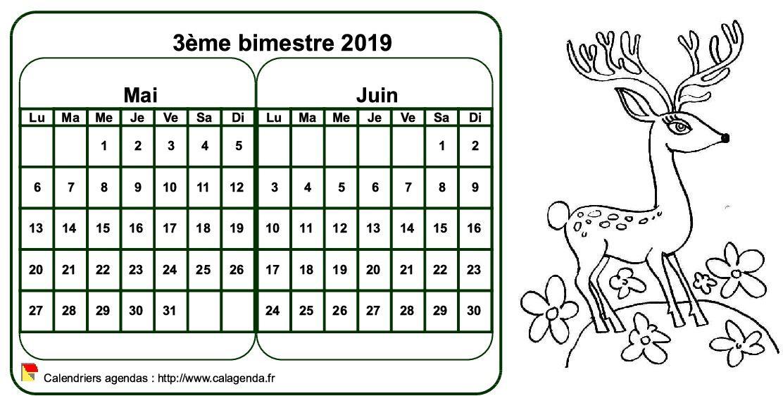 Calendrier 2019 à colorier bimestriel, format paysage, pour enfants