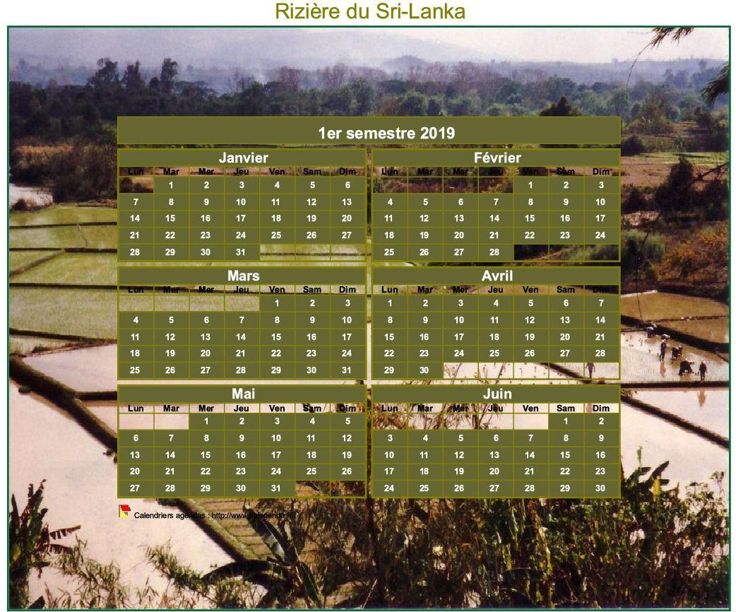 Calendrier 2019 artistique semestriel à imprimer, format mini de poche, avec photo