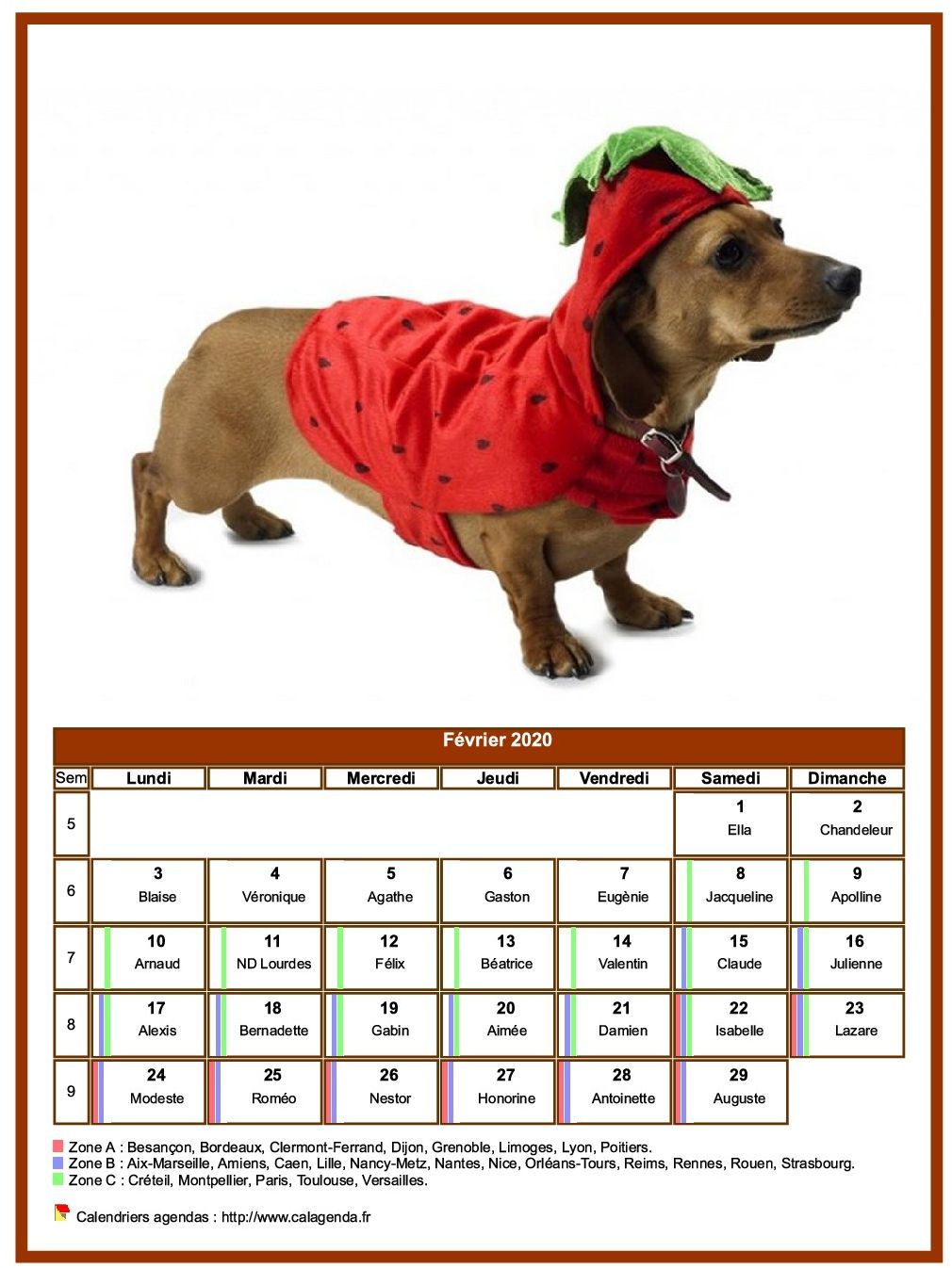 Calendrier février 2020 chiens