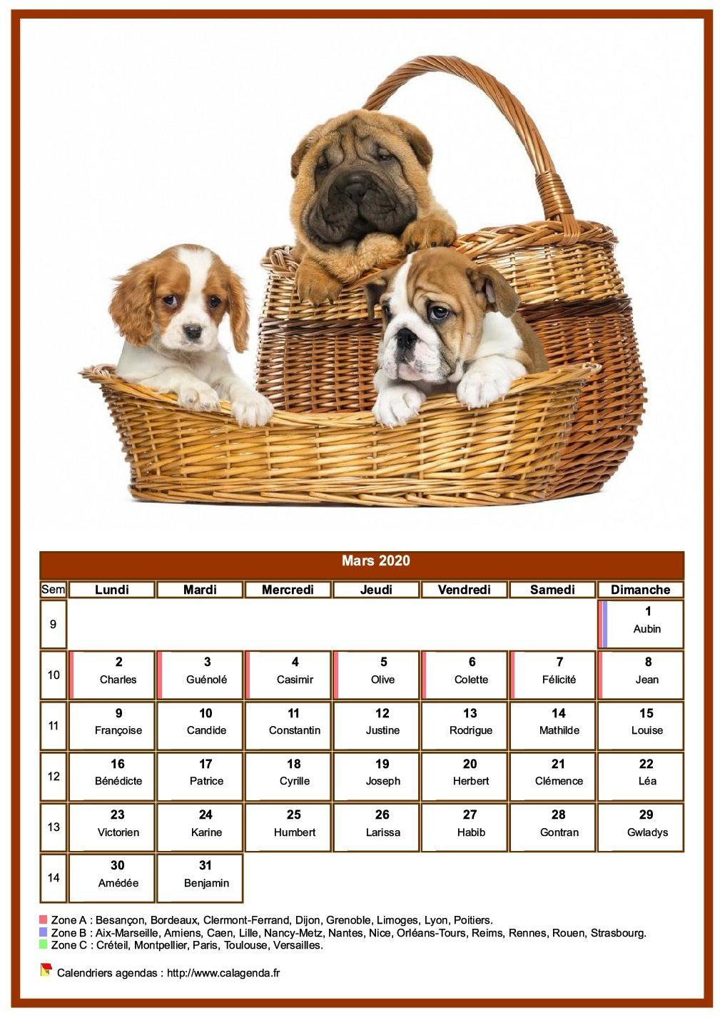 Calendrier mars 2020 chiens
