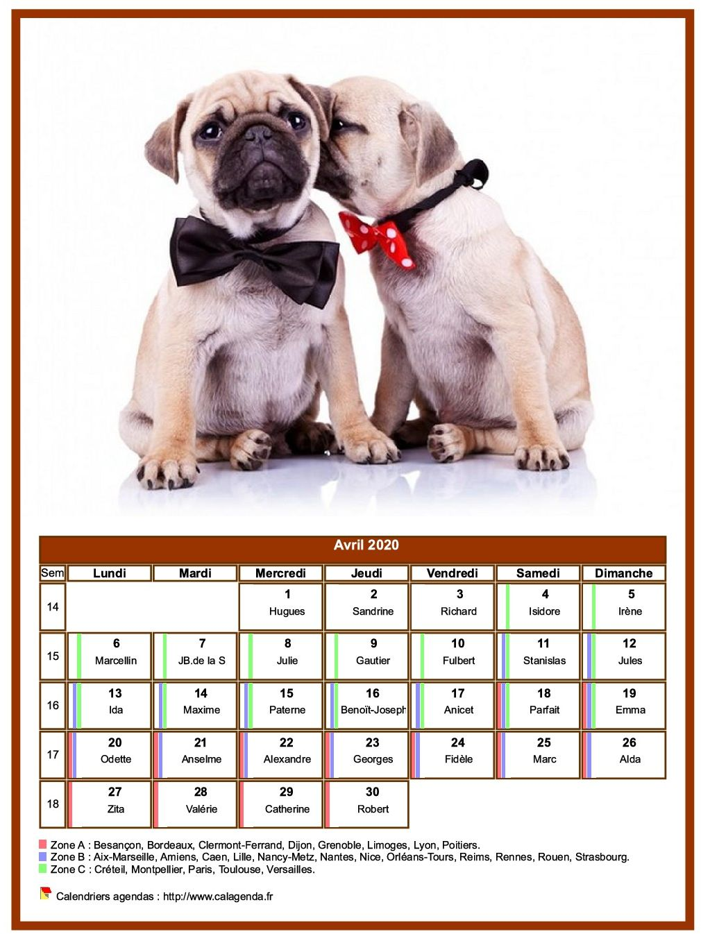 Calendrier avril 2020 chiens