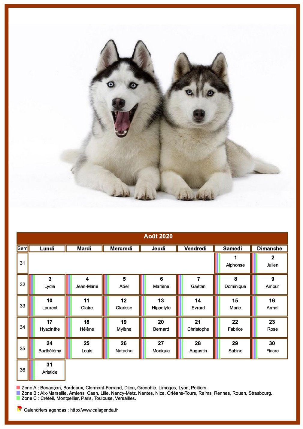 Calendrier août 2020 chiens