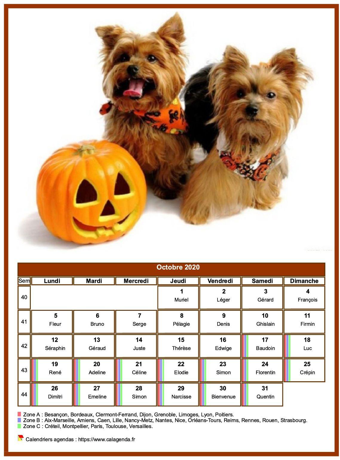Calendrier octobre 2020 chiens