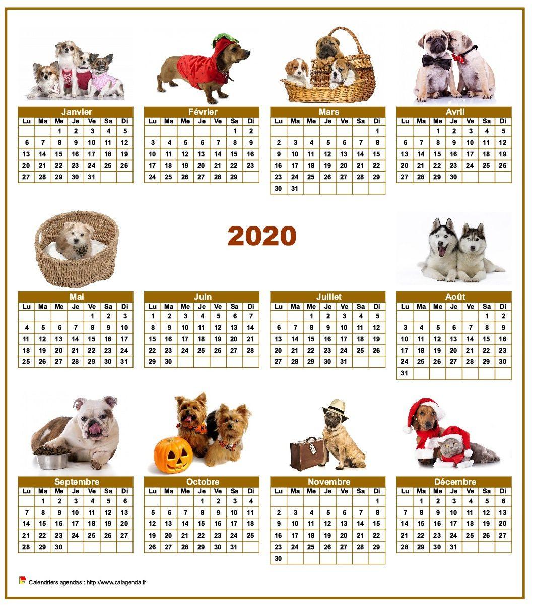 Calendrier 2020 annuel spécial 'chiens' avec 10 photos