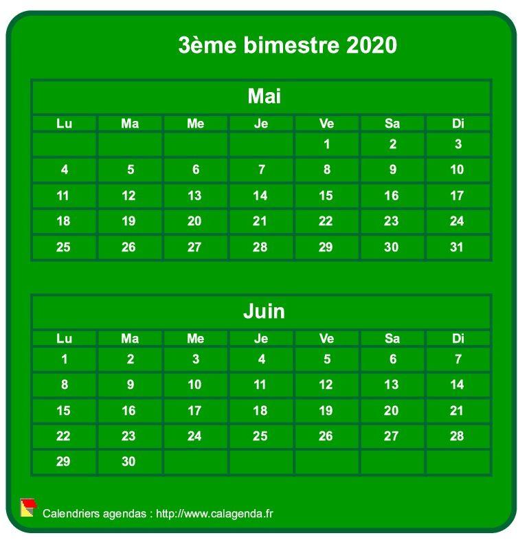 Calendrier 2020 à imprimer bimestriel, format mini de poche, vertical, fond vert