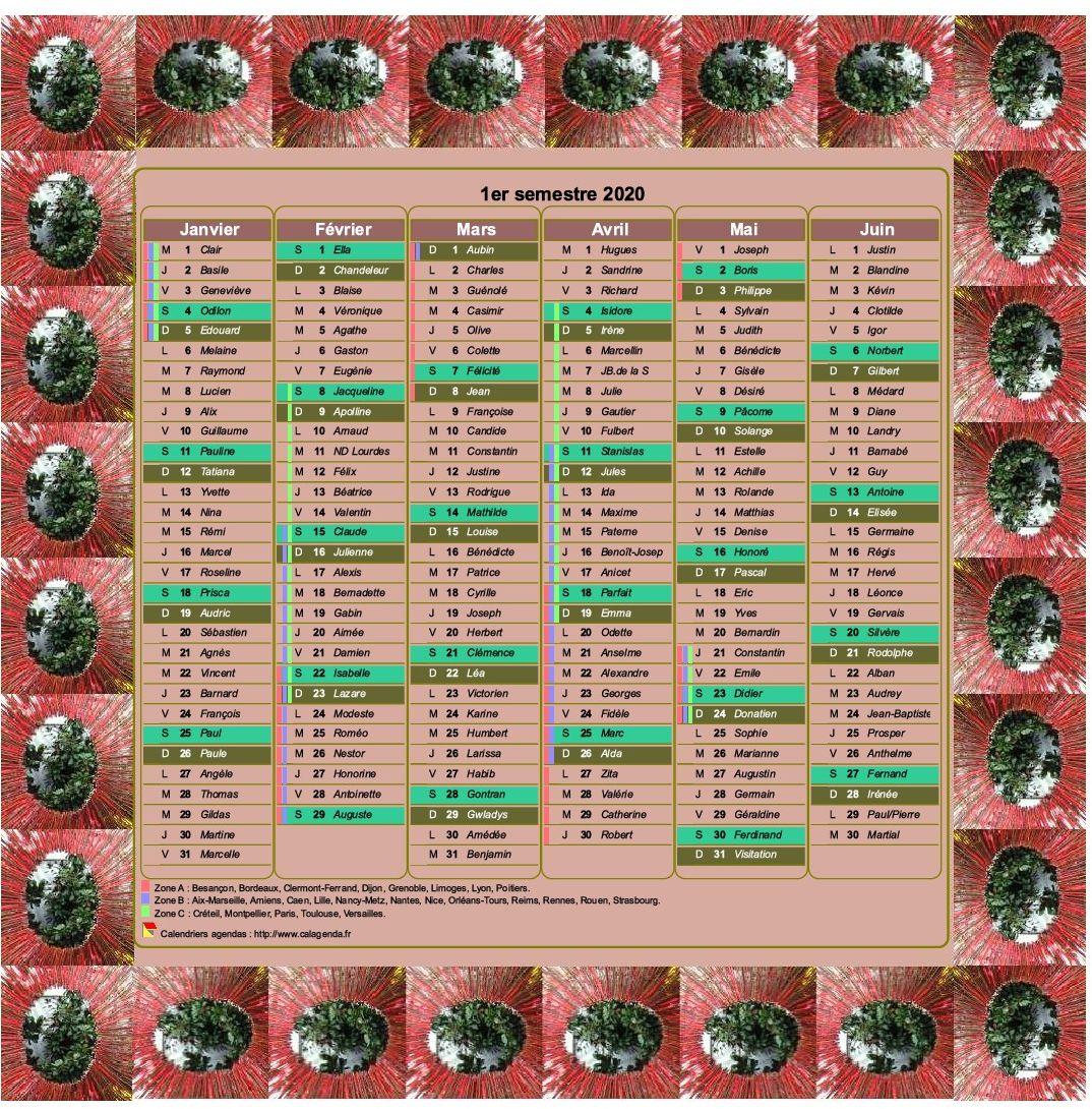Calendrier 2020 semestriel décoratif à imprimer, avec cadre photo, format portrait, une colonne par mois