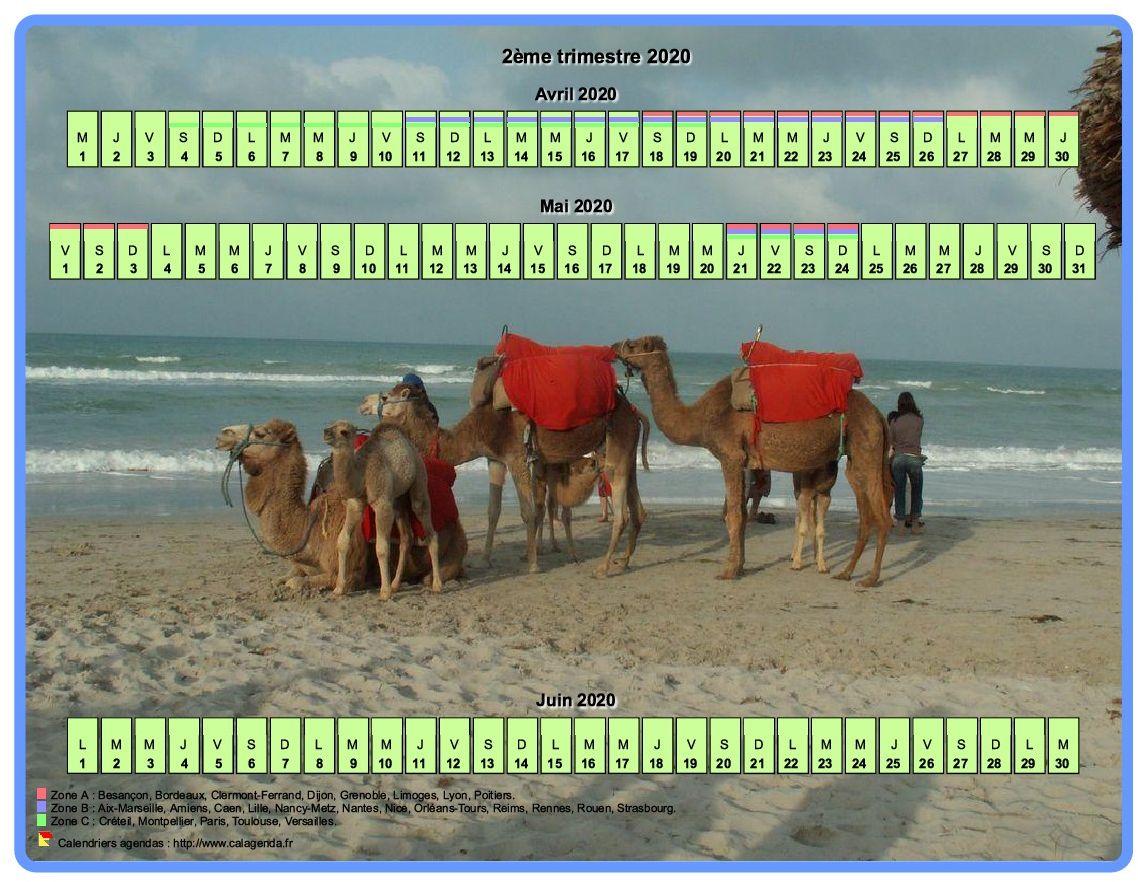 Calendrier 2020 trimestriel horizontal avec une photo en fond de calendrier