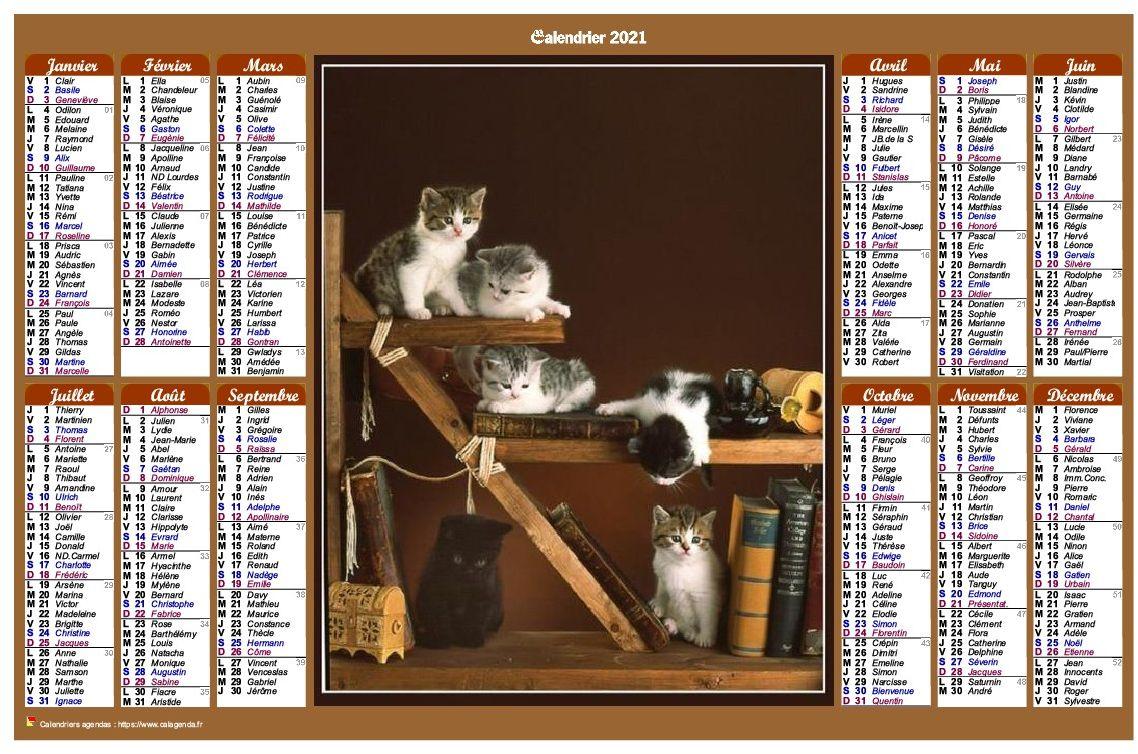 Calendrier 2021 annuel de style calendrierdes postes avec des chats