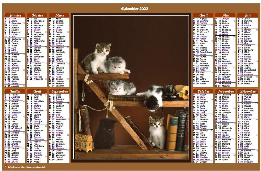 Calendrier 2022 annuel de style calendrierdes postes avec des chats