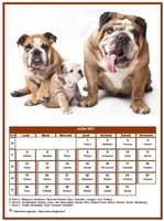 Calendrier mensuel chien