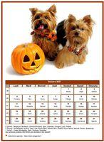 Calendrier chien du mois d'octobre