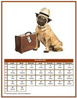 Calendrier chien du mois de novembre