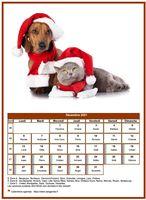Calendrier chien du mois de décembre