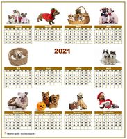 Calendrier annuel avec des chiens