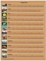 Calendrier annuel horizontal avec 12 photos