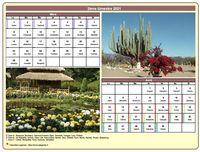 Calendrier bimestriel avec une photo différente chaque mois